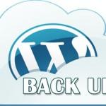 Pentingnya Backup Blog Berbasis CMS WordPress